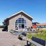 Beijershamn – hamnprojektet som blev ett fågelparadis