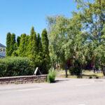 Kroppkakor i trädgården hos Ninnis Kroppkaksbod