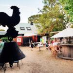 Kamelranchen i Ormöga – en oas mitt på Öland!
